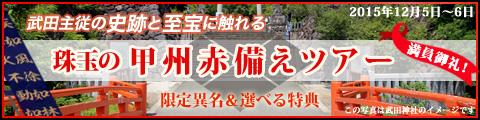 武田主従の史跡と至宝に触れる『珠玉の甲州赤備えツアー』
